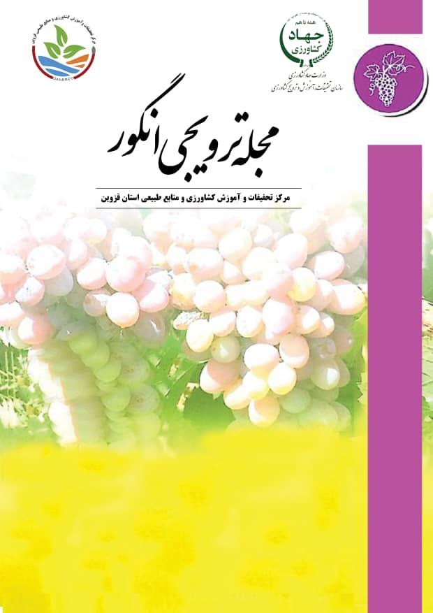 مجله ترویجی انگور